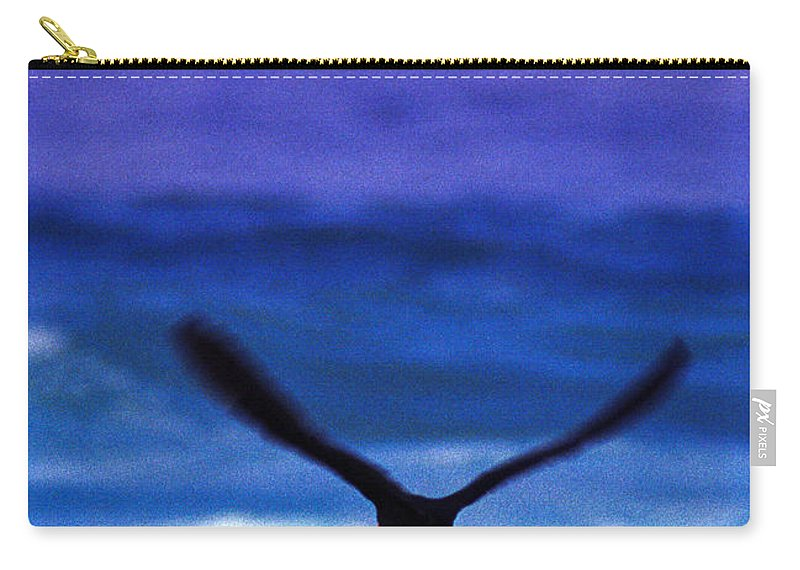 African Black Oystercatcher Carry-all Pouch featuring the photograph Wavewings by Alistair Lyne