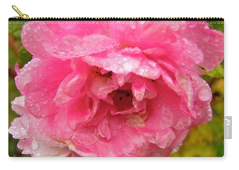 Rose Carry-all Pouch featuring the photograph Wet Rose by Stephanie Moore