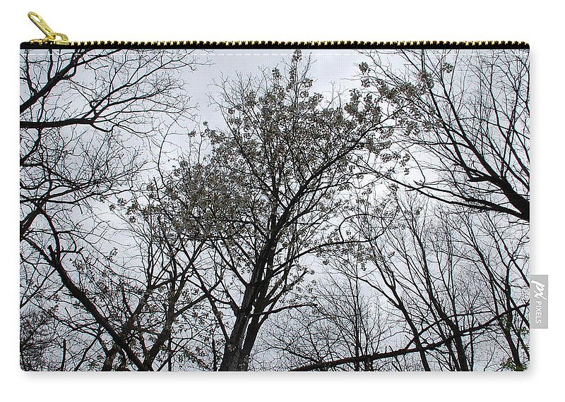 Tree Carry-all Pouch featuring the photograph Whisper by Aimee L Maher ALM GALLERY