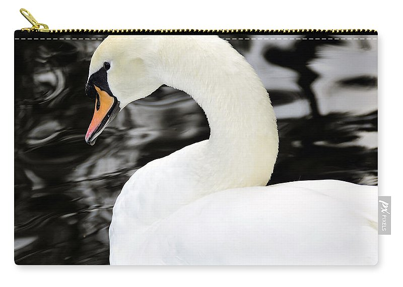 Wildlife Photography Carry-all Pouch featuring the photograph Whistling Swan by David Lee Thompson