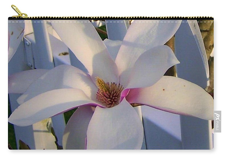 New England Flower Carry-all Pouch featuring the photograph White And Pink Magnolia by Cynthia Amaral