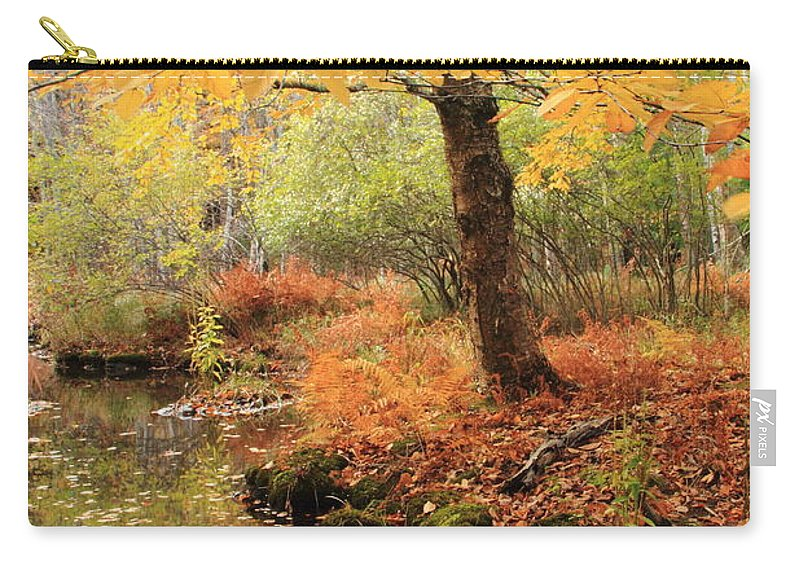 White Ash Carry-all Pouch featuring the photograph White Ash And Stream In Autumn by Roupen Baker