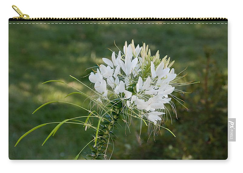 Cleome Carry-all Pouch featuring the photograph White Cleome by Michael Bessler