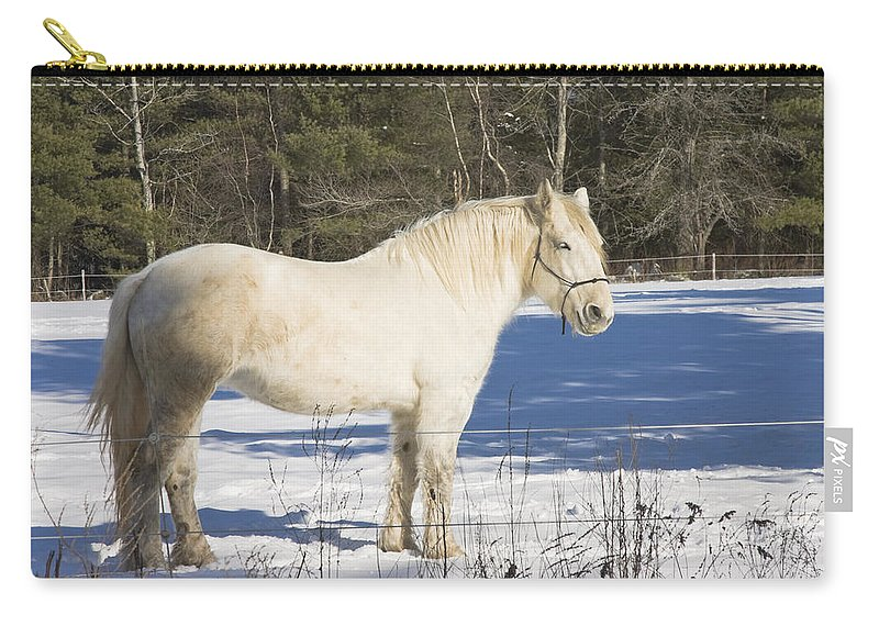 Equine Carry-all Pouch featuring the photograph White Horse In Winter Maine by Keith Webber Jr