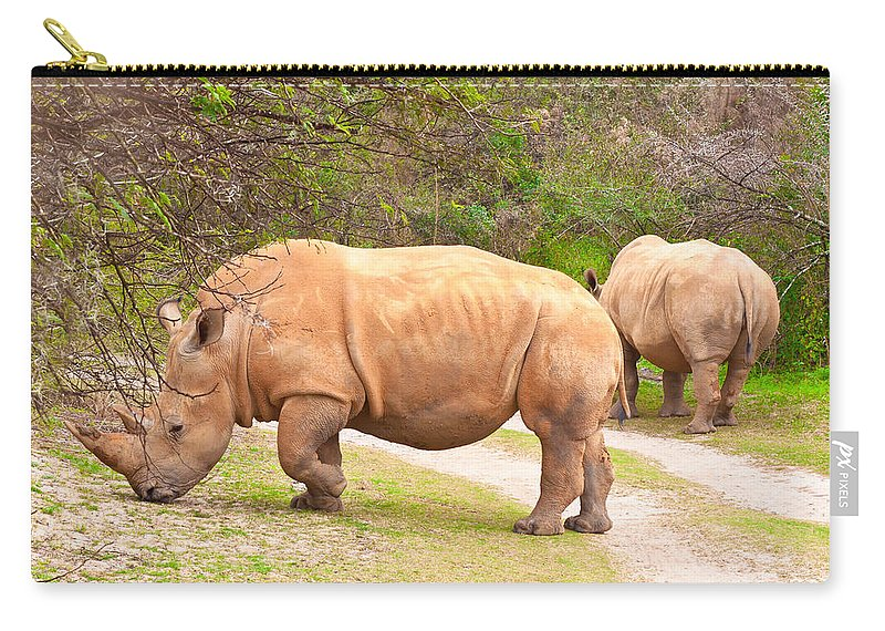 Africa Carry-all Pouch featuring the photograph White Rhinoceros by Tom Gowanlock