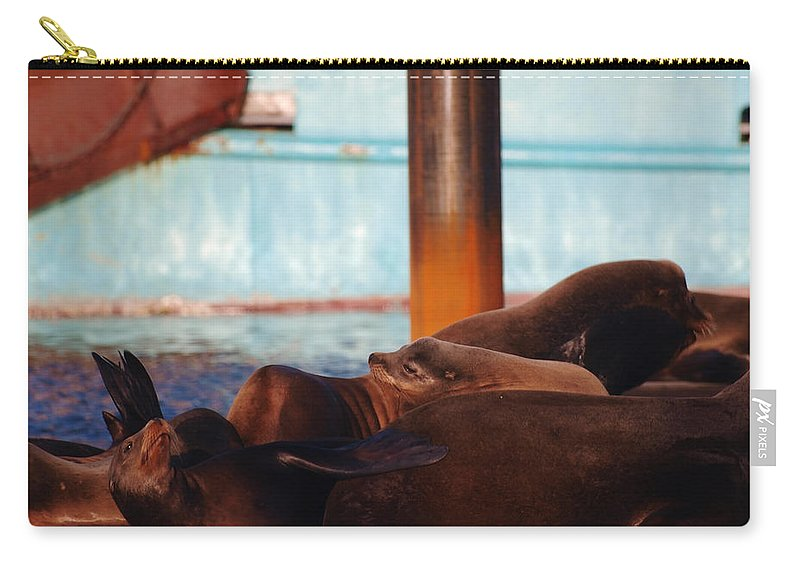 Seal Carry-all Pouch featuring the photograph Whos Your Seal by Teri Schuster