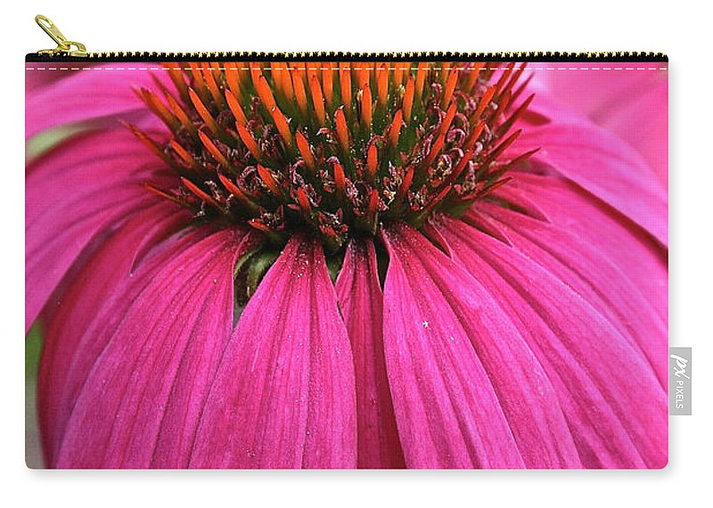 Plant Carry-all Pouch featuring the photograph Wild Berry Purple Cone Flower by Susan Herber