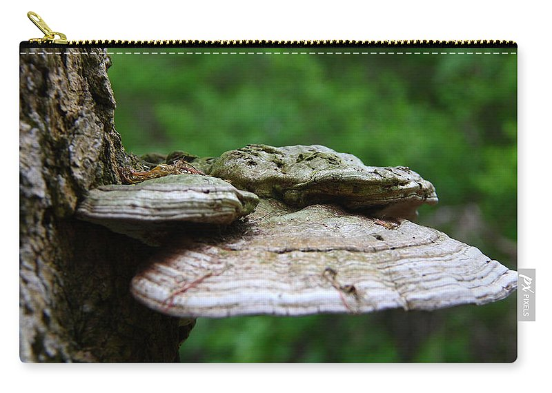 Fungi Carry-all Pouch featuring the photograph Wild Fungi by Davandra Cribbie