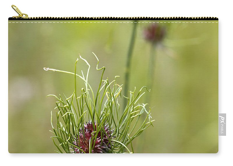 Allium Vineale Carry-all Pouch featuring the photograph Wild Garlic - Allium Vineale by Kathy Clark