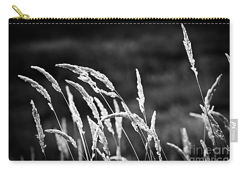 Grass Carry-all Pouch featuring the photograph Wild Grass by Elena Elisseeva