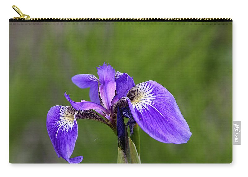 Doug Lloyd Carry-all Pouch featuring the photograph Wild Iris by Doug Lloyd