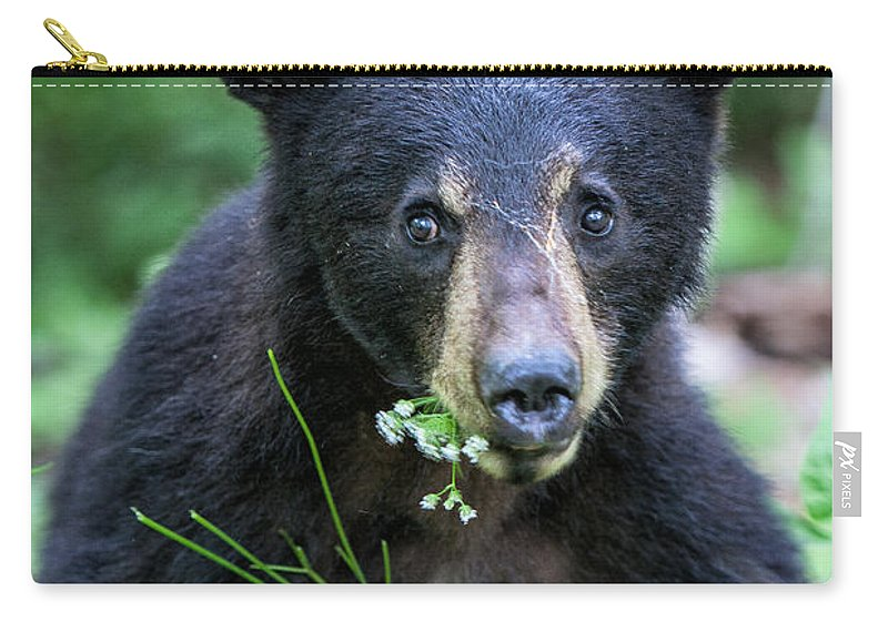 Black Carry-all Pouch featuring the photograph Wildflower Bear by Ronald Lutz