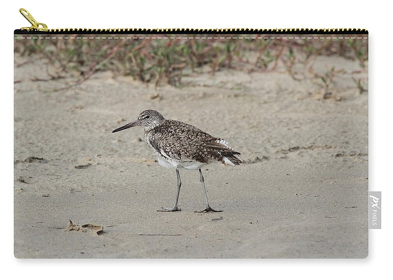 Doug Lloyd Carry-all Pouch featuring the photograph Willet by Doug Lloyd