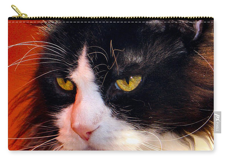 Cat Carry-all Pouch featuring the photograph Willow Deep Thought by Art Dingo
