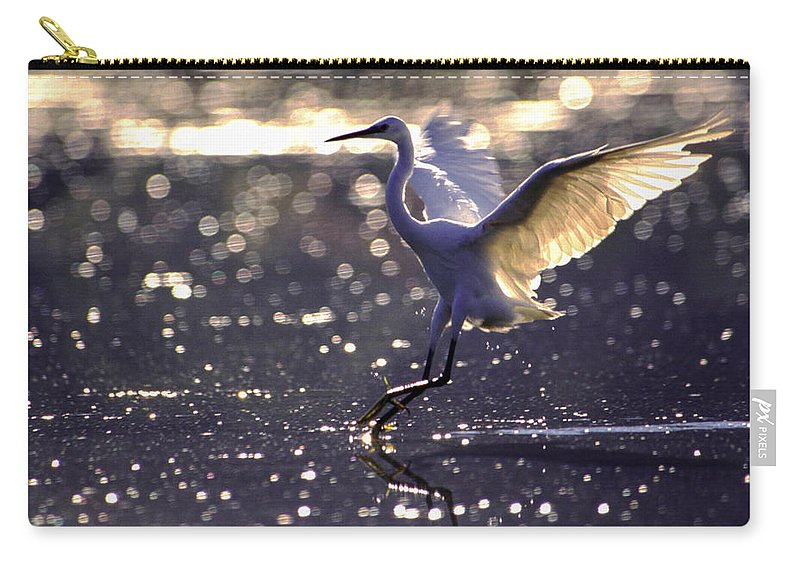 Africa Carry-all Pouch featuring the photograph Wingdance by Alistair Lyne