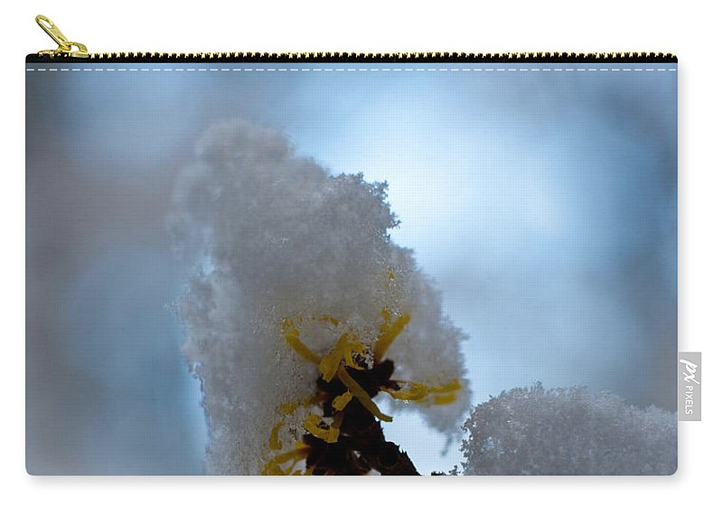 Winter Carry-all Pouch featuring the photograph Winter Light by Mike Reid