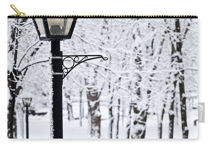 Winter Carry-all Pouch featuring the photograph Winter Park by Elena Elisseeva