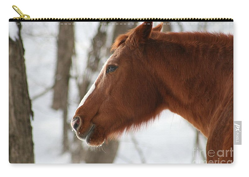 Horse Carry-all Pouch featuring the photograph Winter Reflections by Neal Eslinger