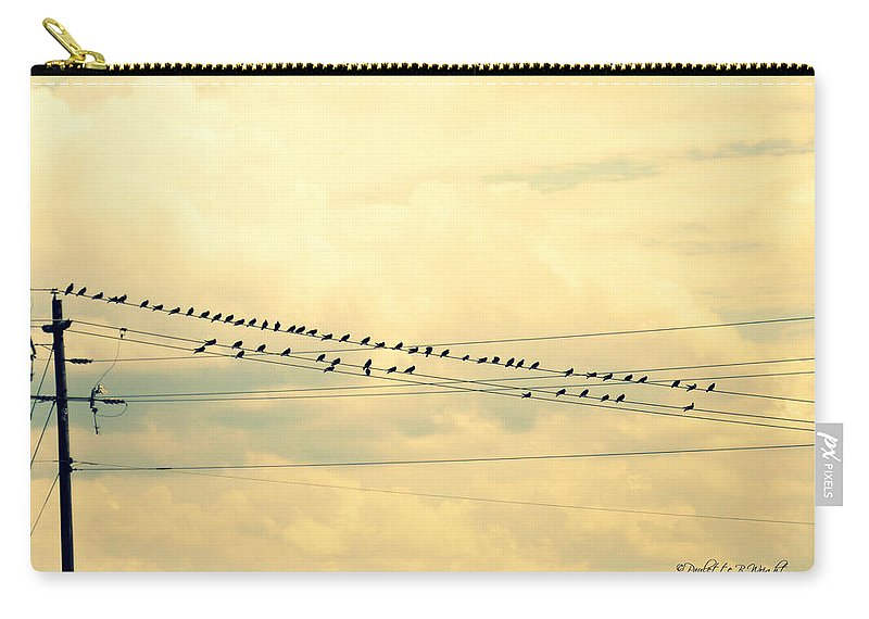 Birds Carry-all Pouch featuring the photograph Wires With Many Birds On Them by Paulette B Wright
