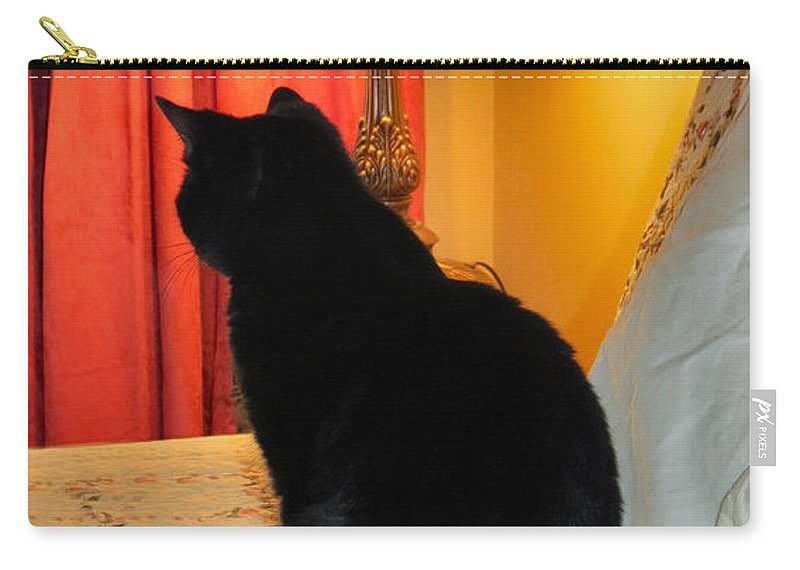 Cat Carry-all Pouch featuring the photograph Witches Cat by Art Dingo