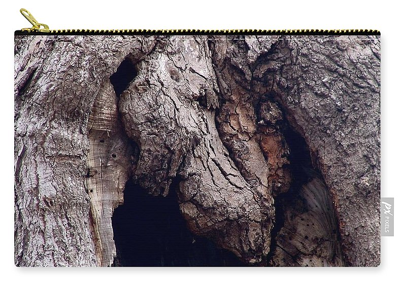 Tree Carry-all Pouch featuring the photograph Wolf And The Eagle by Art Dingo
