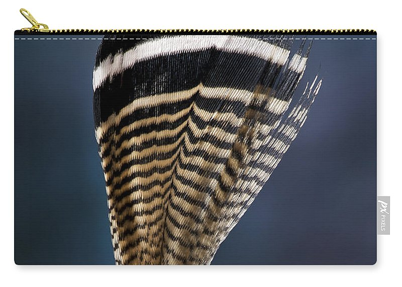 Feather Carry-all Pouch featuring the photograph Wood Duck Feather by Jean Noren
