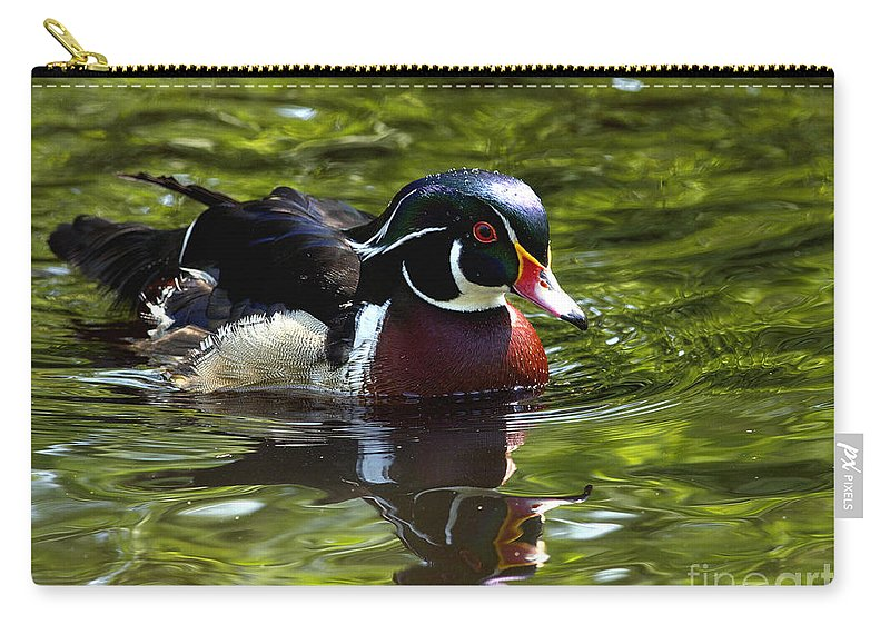 Wood Duck Carry-all Pouch featuring the photograph Wood Duck by Sharon Talson