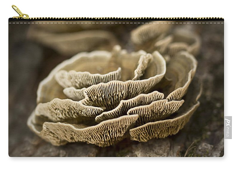 Fungus Carry-all Pouch featuring the photograph Wood Shrooms by Kim Henderson