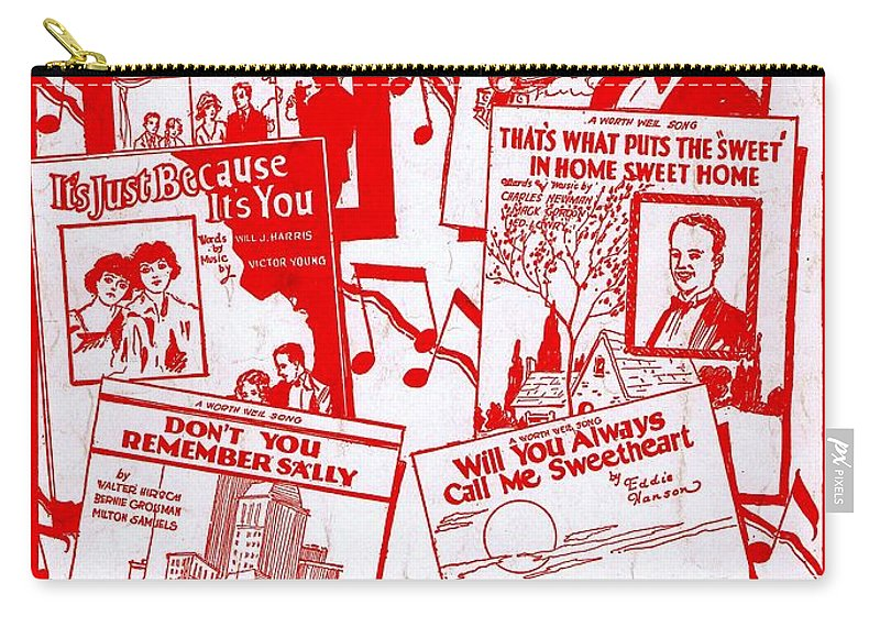 Classic Carry-all Pouch featuring the photograph Worth Weil Songs by Mel Thompson