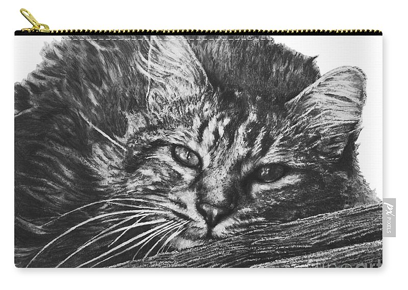 Wyatt Carry-all Pouch featuring the drawing Wyatt by Marianne NANA Betts