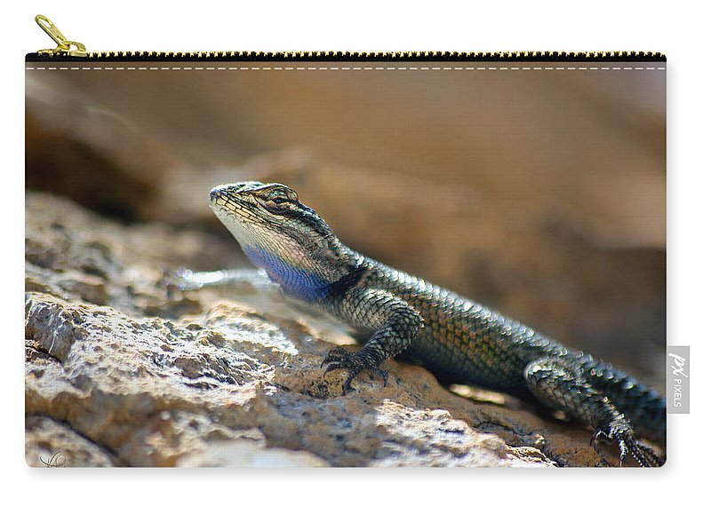 Photograph Carry-all Pouch featuring the photograph Yarrow's II by Vicki Pelham