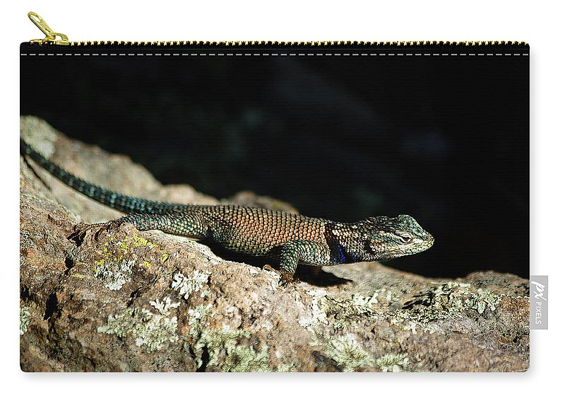 Lizard Carry-all Pouch featuring the photograph Yarrow's by Vicki Pelham