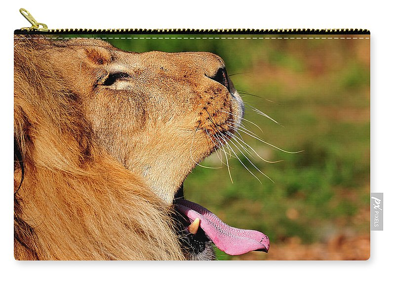 Afican Carry-all Pouch featuring the photograph Yawning by Bill Dodsworth