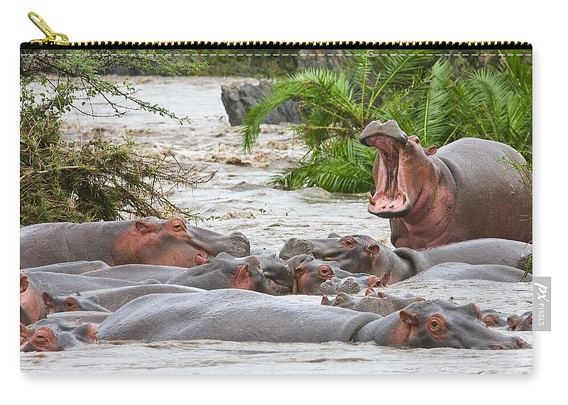 African Carry-all Pouch featuring the photograph Yawning Hippo Hippopotamus Amphibius by Carson Ganci