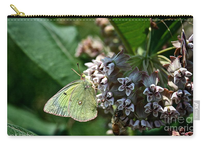 Outdoors Carry-all Pouch featuring the photograph Yellow Cabbage Moth by Susan Herber