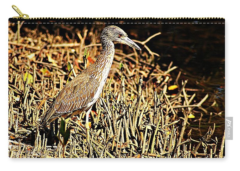 Yellow Crowned Night Heron Carry-all Pouch featuring the photograph Yellow Crowned Night Heron by Joe Faherty
