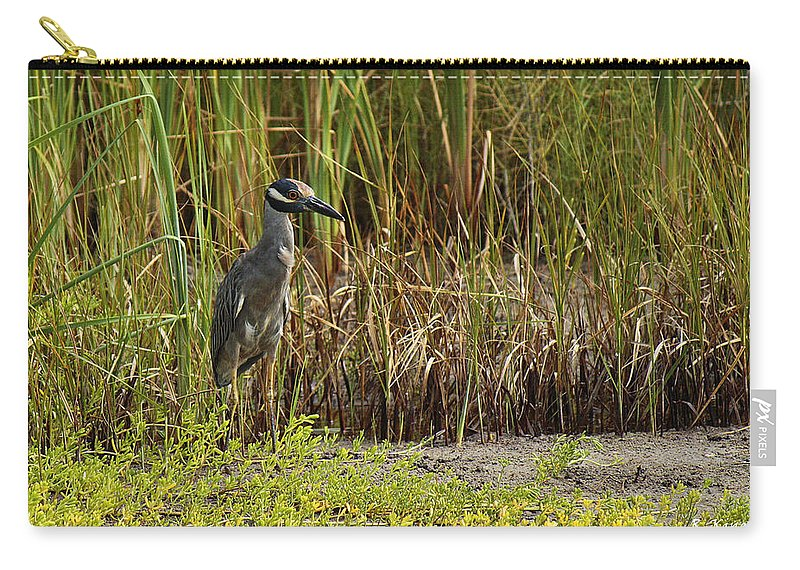 Roena King Carry-all Pouch featuring the photograph Yellow-crowned Night-heron by Roena King