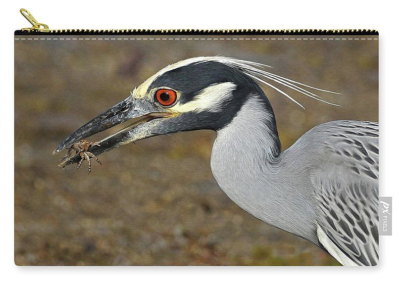 Yellow Crowned Night Heron Carry-all Pouch featuring the photograph Yellow Crowned Night Heron With Catch by Dave Mills