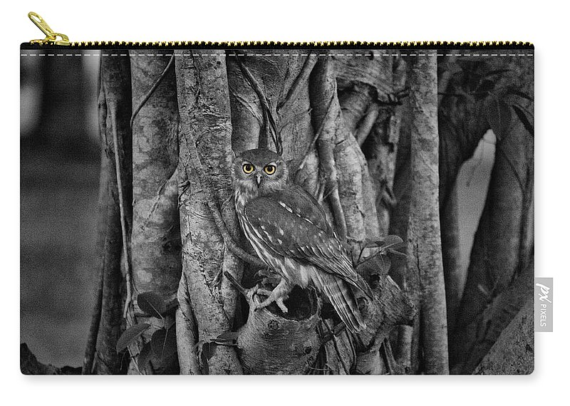 Barking Owl Carry-all Pouch featuring the photograph Yellow Eyes by Douglas Barnard