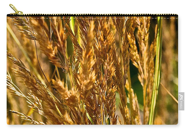 Grass Carry-all Pouch featuring the photograph Yellow Feather Reed Grass by Susan Herber