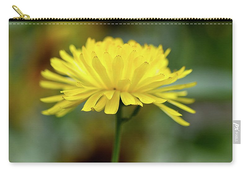 Bokeh Carry-all Pouch featuring the photograph Yellow Flower And Bokeh by Greg Nyquist