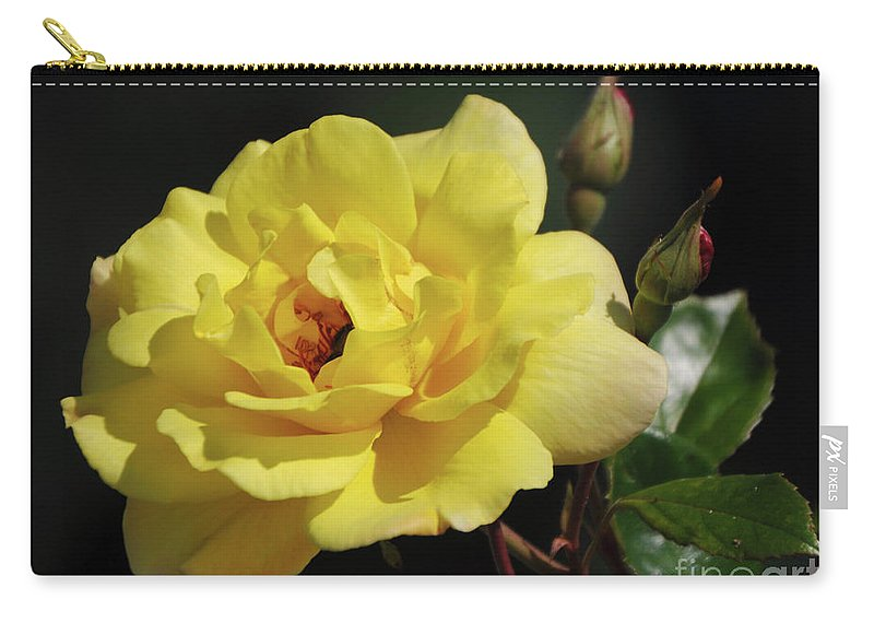 Yellow Carry-all Pouch featuring the photograph Yellow Rose by Ronald Grogan