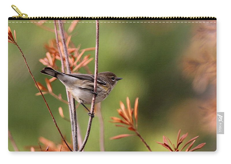 Yellow-rumped Warbler Carry-all Pouch featuring the photograph Yellow-rumped Warbler - Peaceful Pastels by Travis Truelove