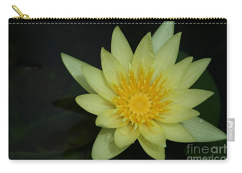 Aloha Carry-all Pouch featuring the photograph Yellow Waterlily - Nymphaea Mexicana - Hawaii by Sharon Mau