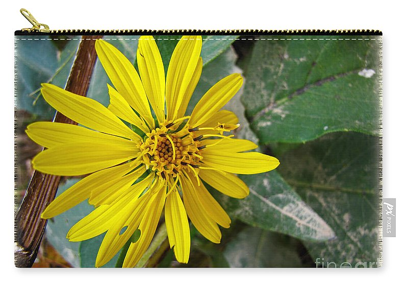 Nature Carry-all Pouch featuring the photograph Yellow Wildflower by Debbie Portwood