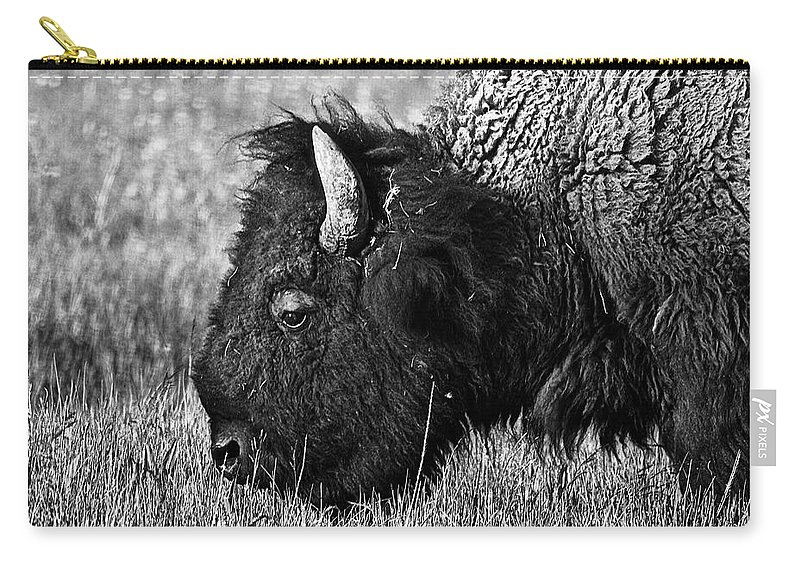 Yellowstone Carry-all Pouch featuring the photograph Yellowstone Bison by Dan Wells