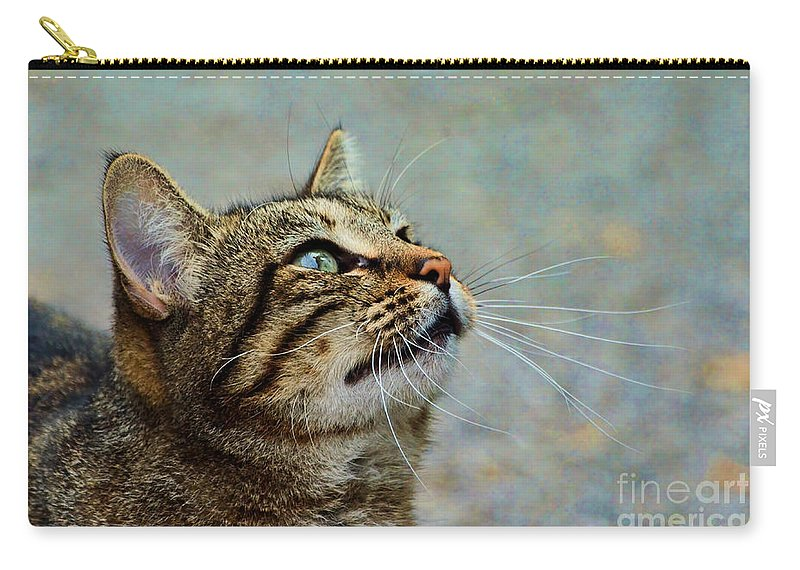 Nature Carry-all Pouch featuring the photograph Yes I Am A Pretty Kitty by Debbie Portwood