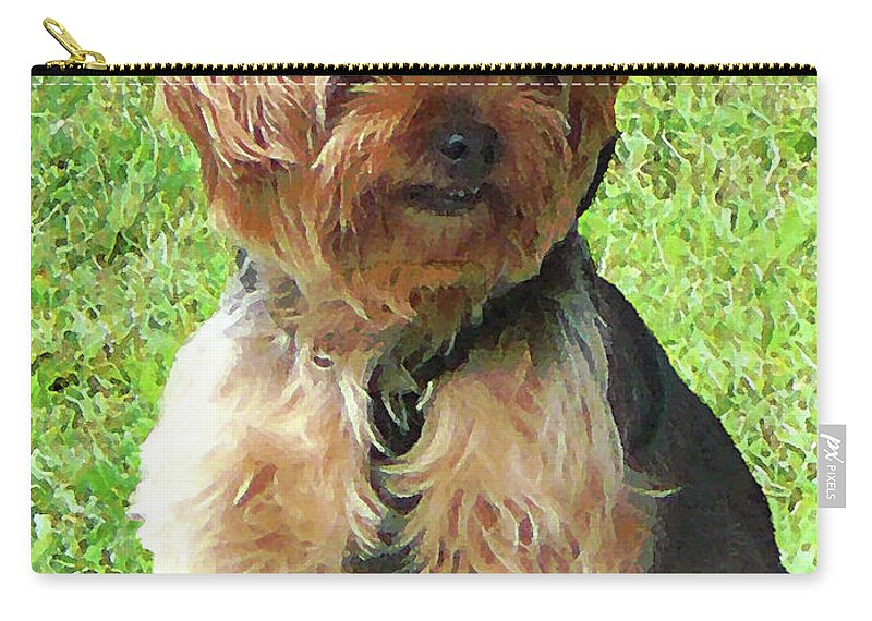 Dog Carry-all Pouch featuring the photograph Yorkshire Terrier In Park by Susan Savad