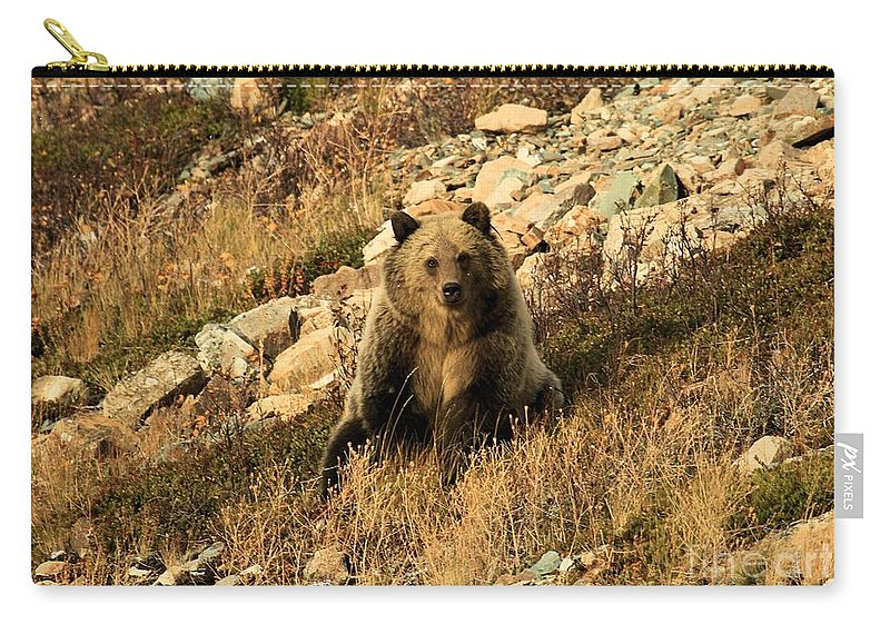 Grizzly Bear Carry-all Pouch featuring the photograph You Whistling At Me? by Adam Jewell