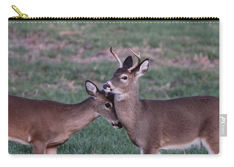 Carry-all Pouch featuring the photograph Young Bucks by Travis Truelove